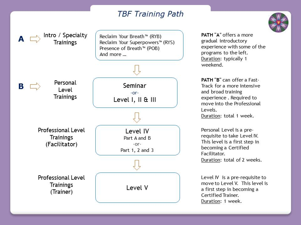 Click for full-size image (960x720) of Training Path Overview